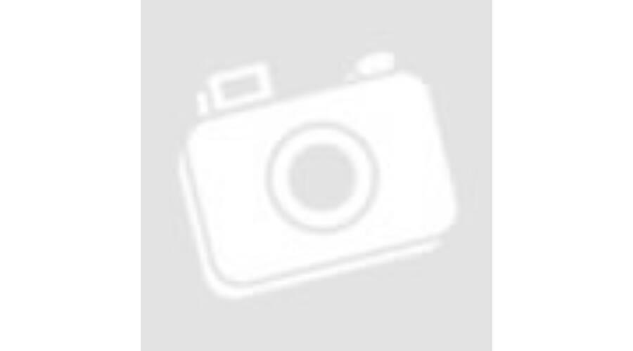 Casio Collection LTS 100D 1AVEF női karóra W3